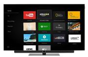 """TV 65 """"LOEWE BILD 3.65 OLED"""